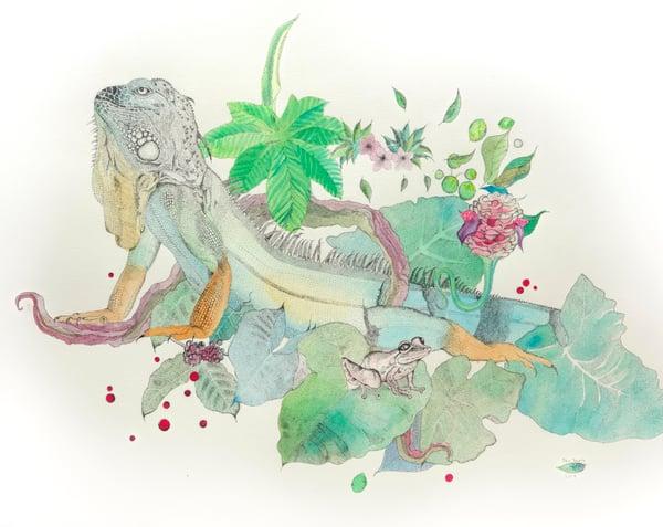 Image of Iguana, Coqui frog, Elephant ear, Honeycomb Ginger & Coffee Bean Plant