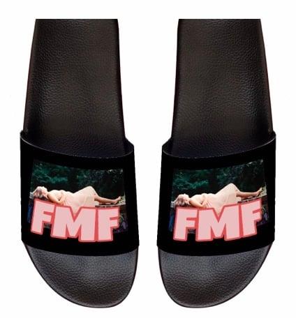 Image of FMF slides