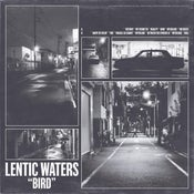 "Image of LENTIC WATERS ""bird"" LP"
