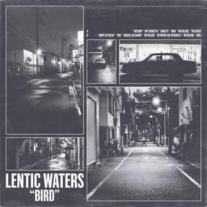"""Image of LENTIC WATERS """"bird"""" LP"""