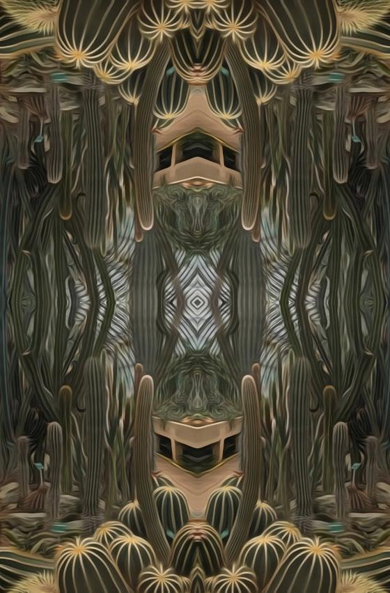 Image of cactus I / cactus II / cactus III