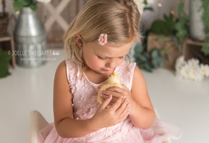 Image of Spring Mini Session - Saturday March 30, 2019