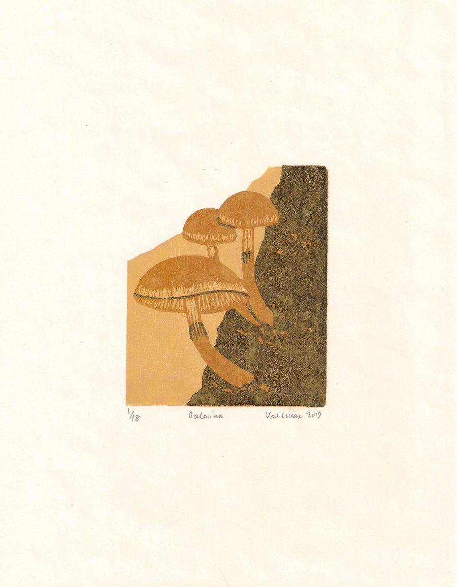 Image of Galerina Print