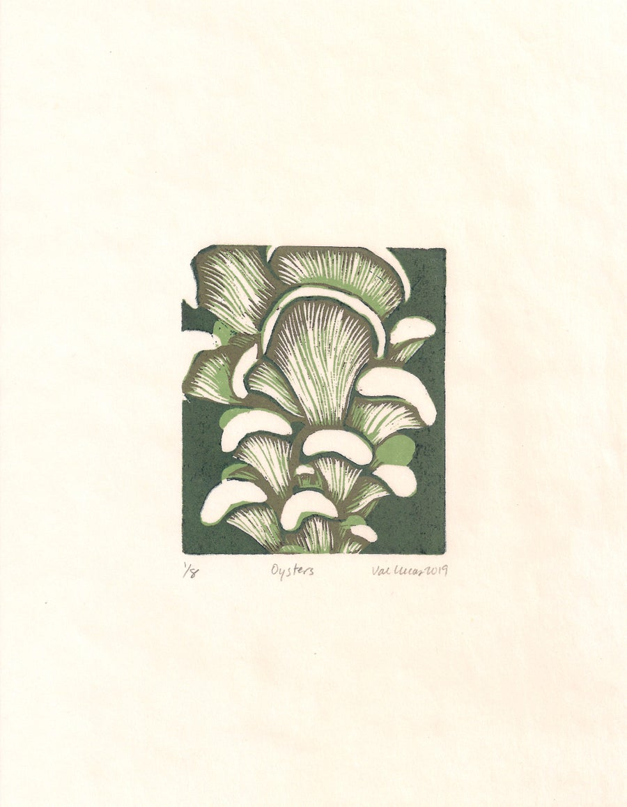 Image of Oyster Mushrooms Print