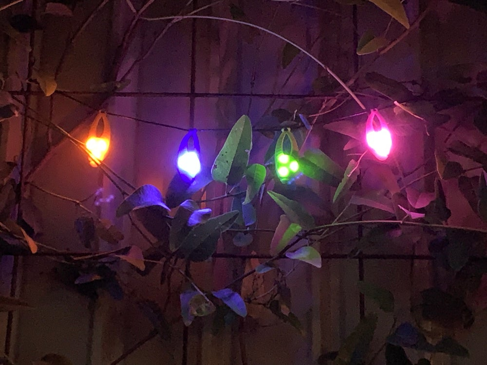 Image of SAFEGLOW™ LED FAIRY LIGHTS 4 Pack: Weddings, Parties, Anything!