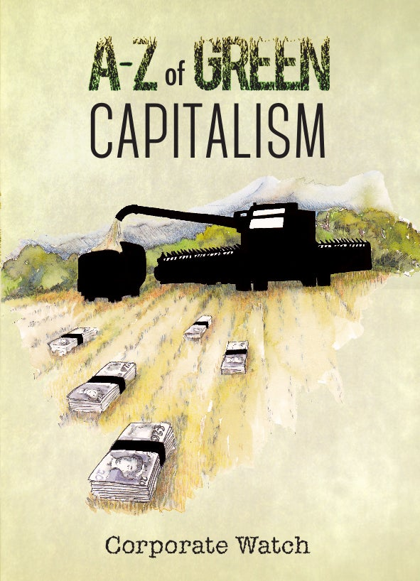 Image of A-Z of Green Capitalism