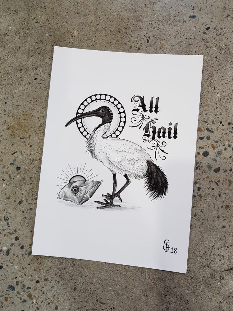 Image of All Hail Bin Chicken