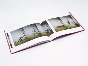 Image of Erik Lindman & David Schoerner - Photographs of Sculptures