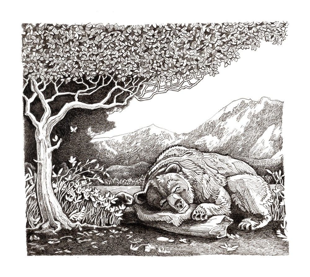 "Image of Sleeping bear 5"" X 7"""