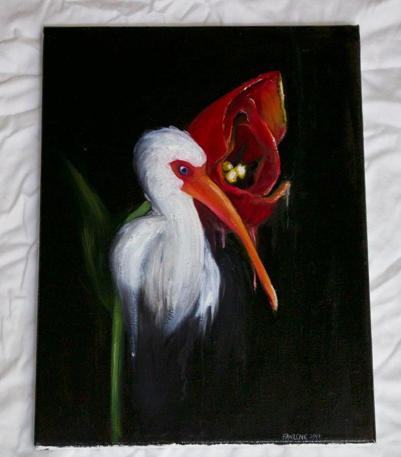 Image of Ibis #103