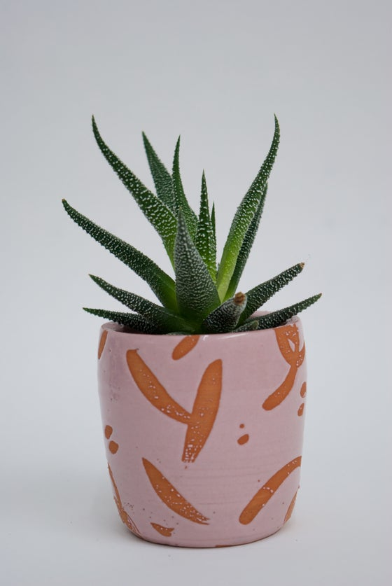 Image of Deco Dance Splash small plant pot