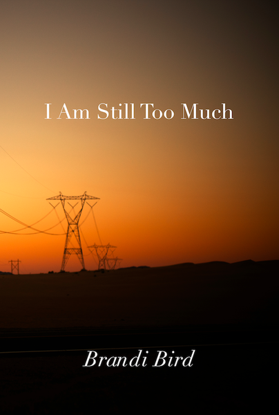 Image of I Am Still Too Much by Brandi Bird