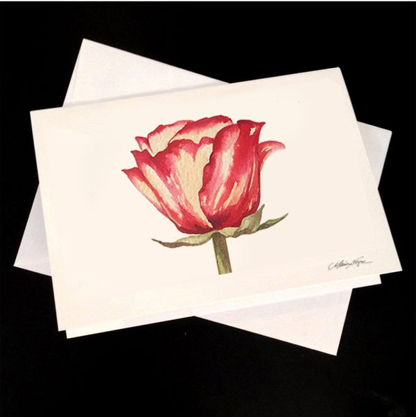Image of Rose 5-Pack Greeting Card Set