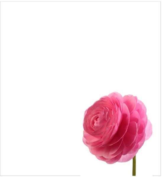 Image of Pretty In Pink NOTEPAD New