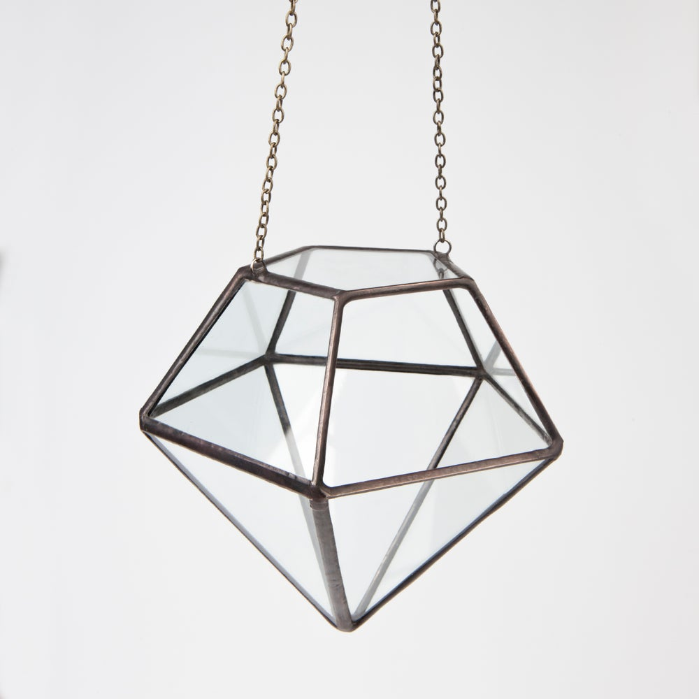 Image of Hanging Diamond Terrarium