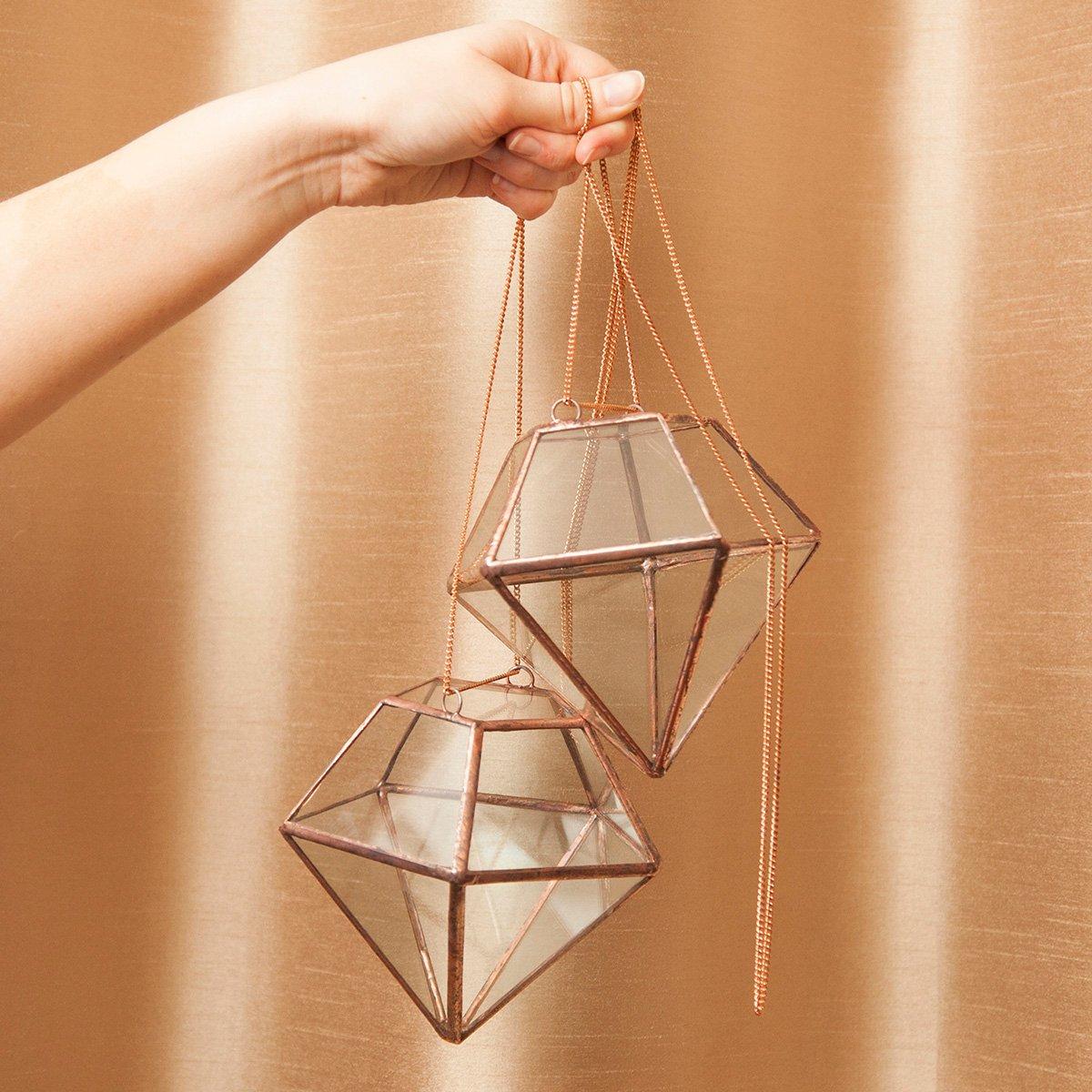 Image of Hanging Diamond Terrarium