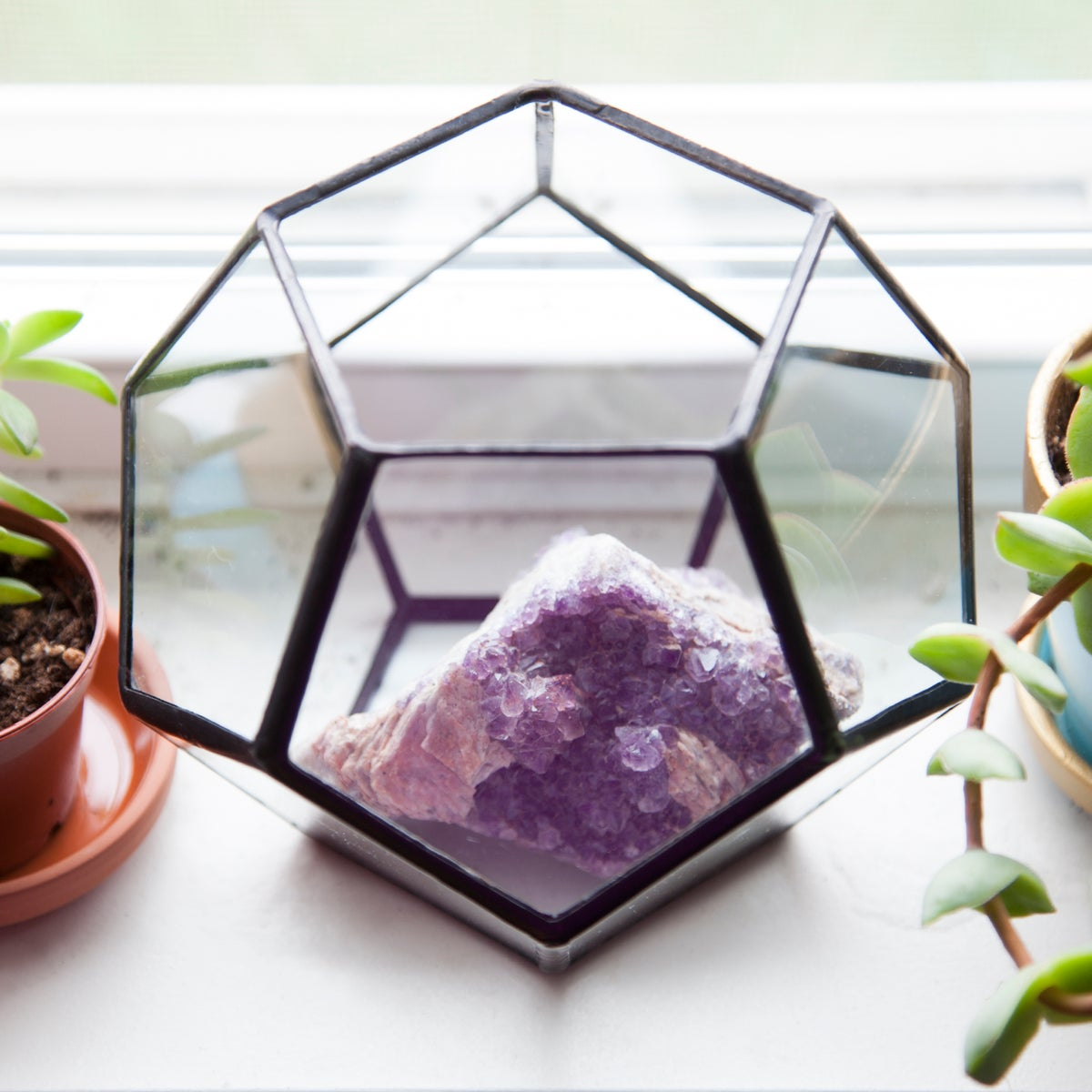 Image of Small Dodecahedron Terrarium