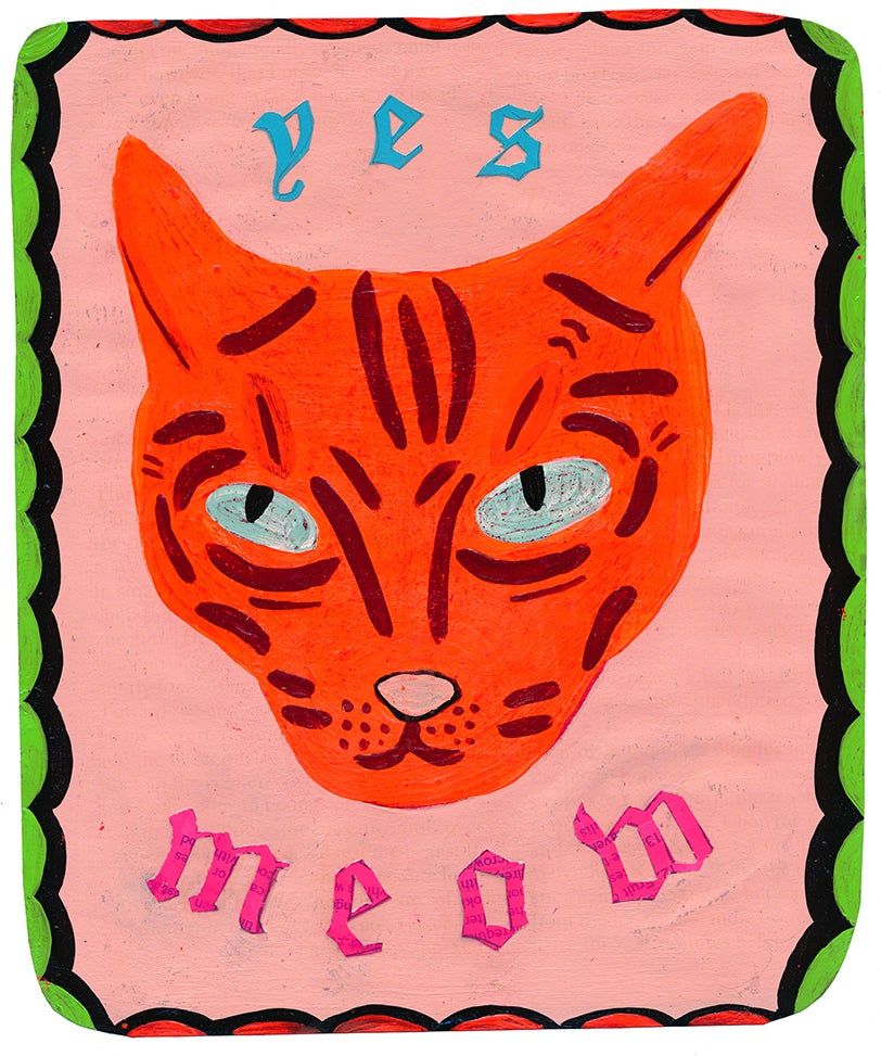 Image of yes meow