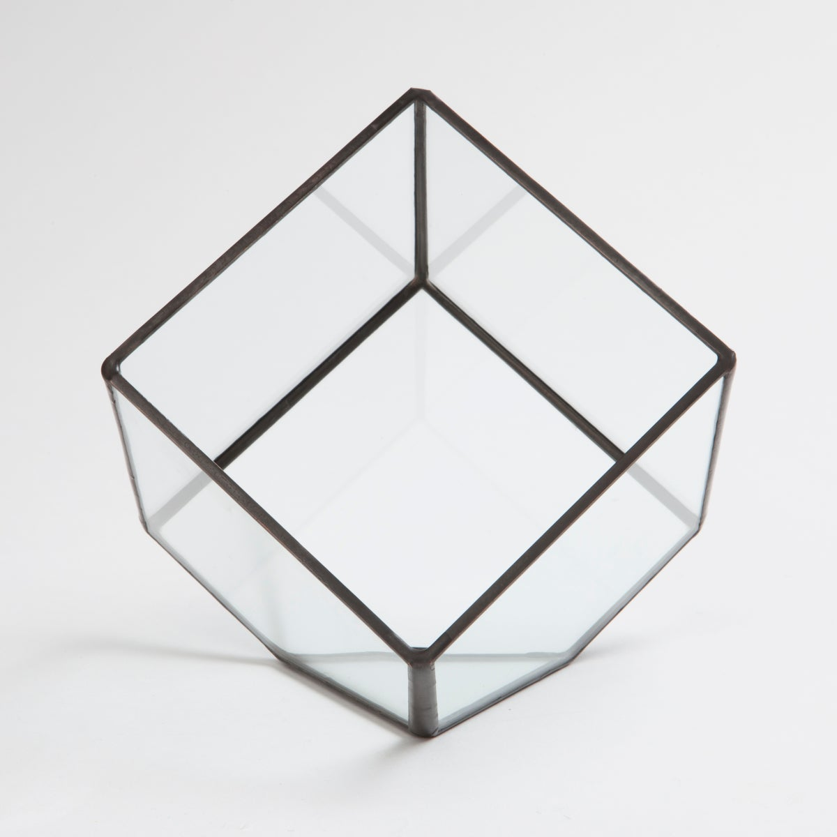 Image of Small Cube Terrarium
