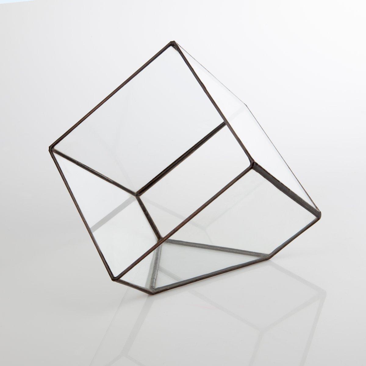 Image of Large Cube Terrarium