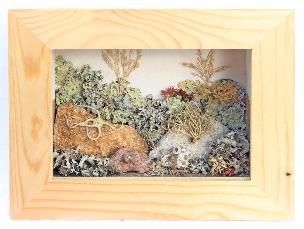 Image of Sea Life Wall-Hanging