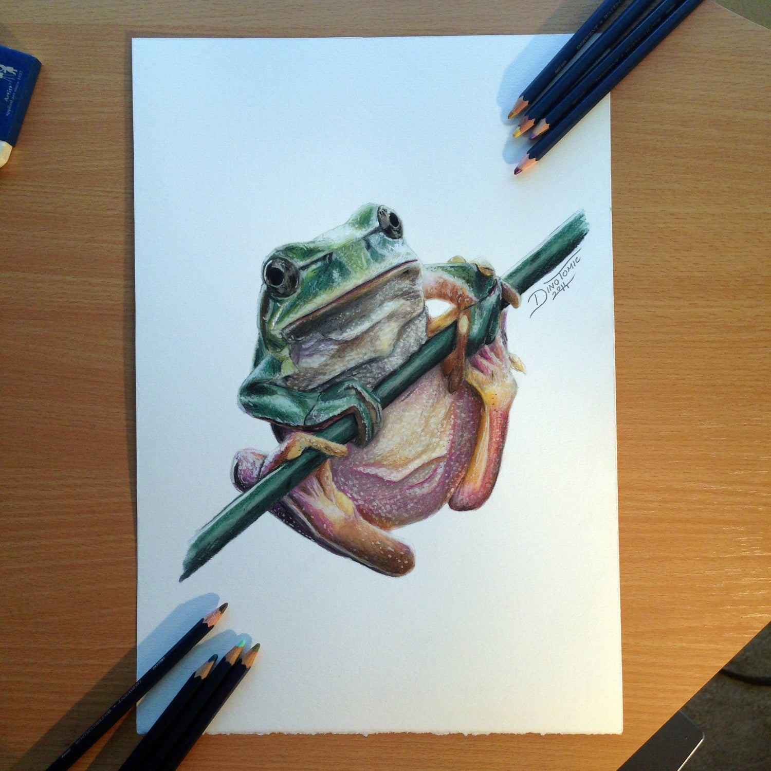 Image of #40 Frog