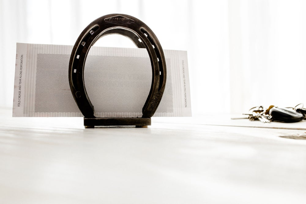 Image of Horseshoe Napkin Holder