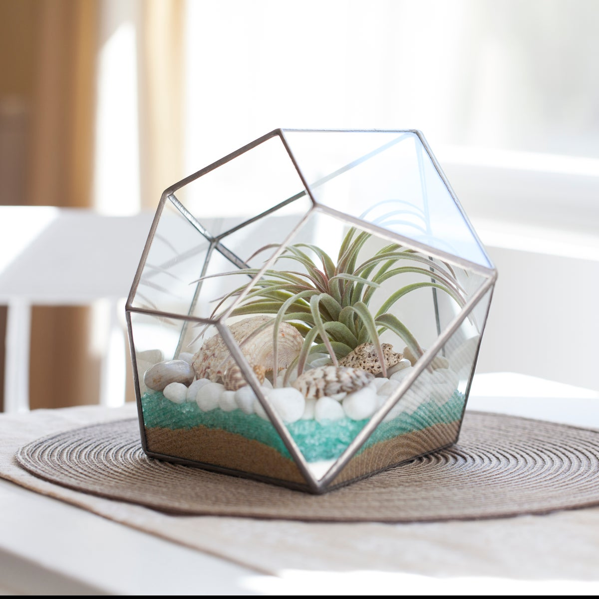 Image of Large Diamond Terrarium
