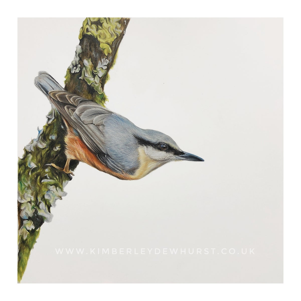 Image of 'Nuthatch' Limited Edition Print