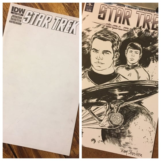 Image of Star Trek blank cover commission