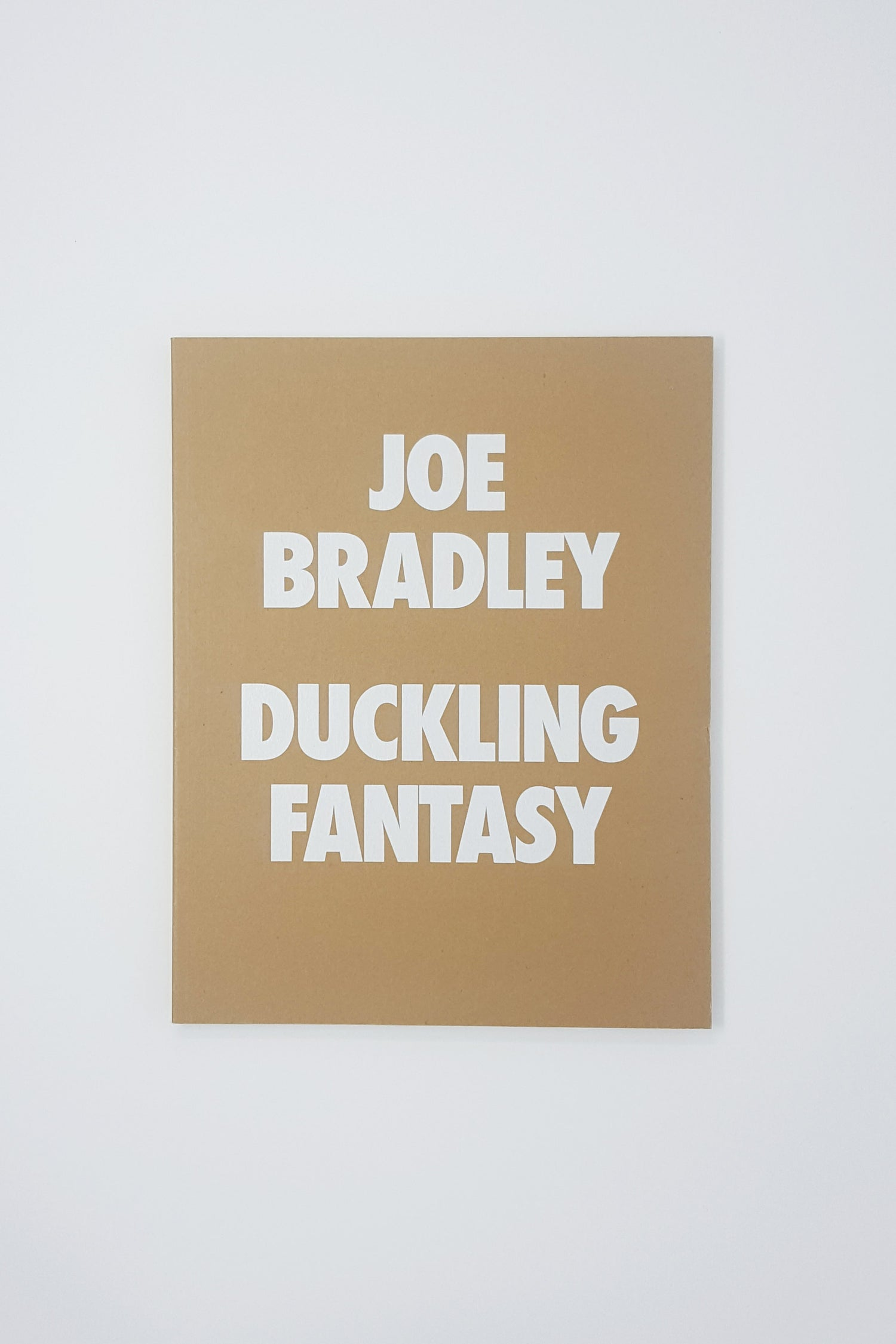Image of Joe Bradley - Duckling Fantasy