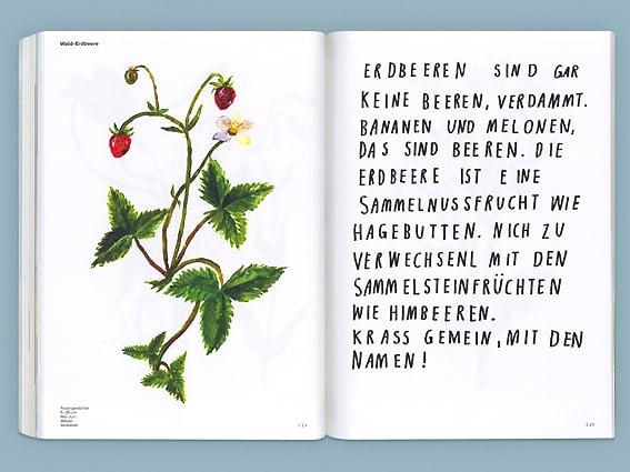 Image of BUCH Oh, eine Pflanze!