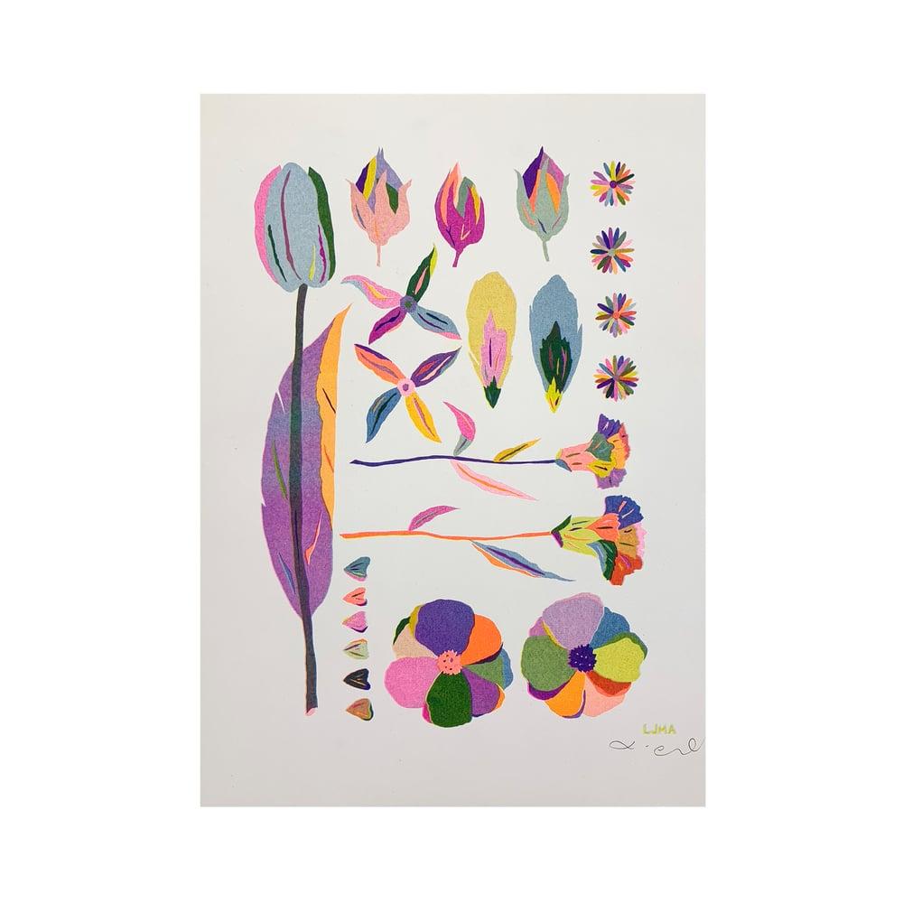 Image of Settle Petal Riso Print