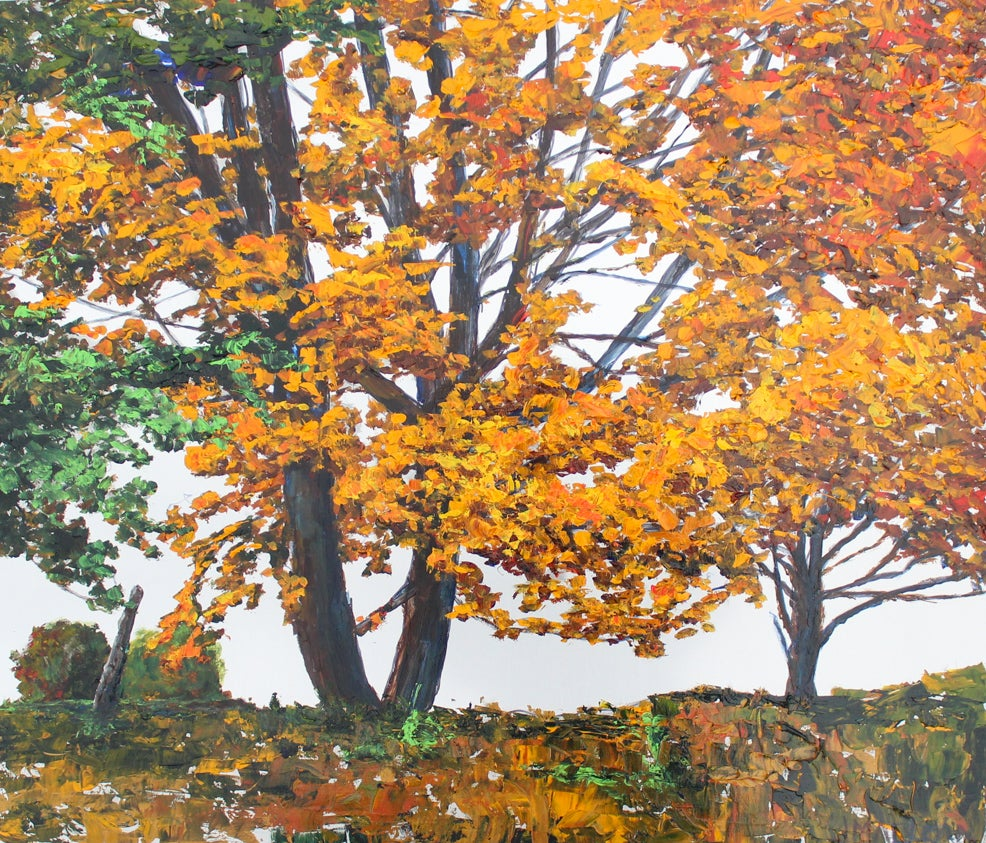 Image of - Colour Me Orange -