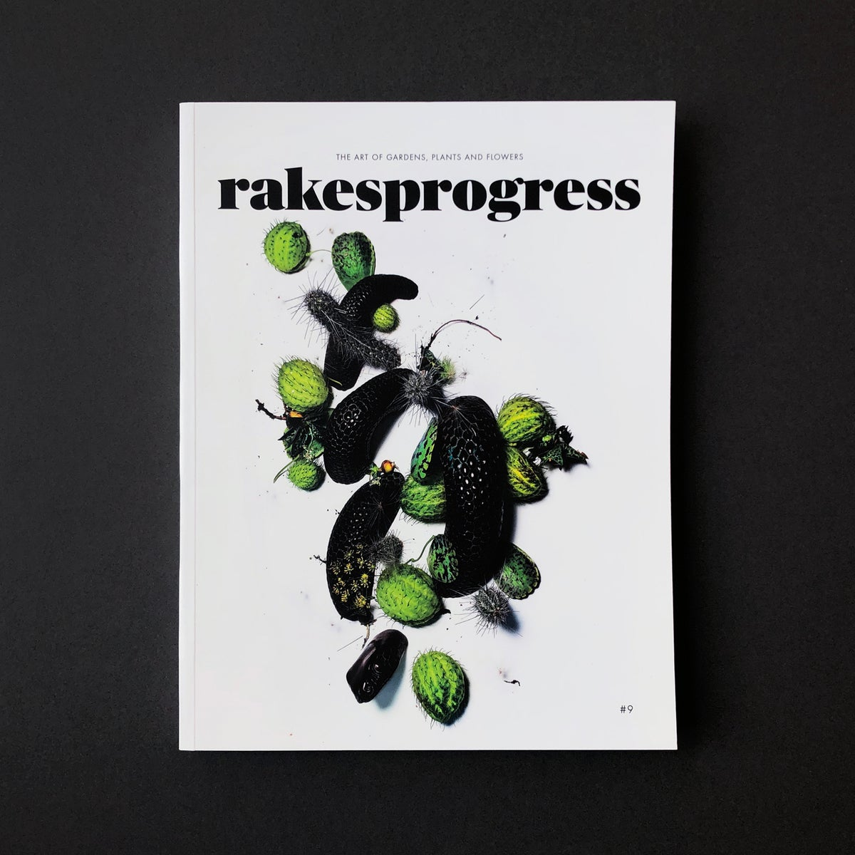 Image of 'Rakesprogress' Magazine.