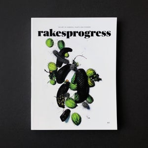 Image of 'Rakesprogress' Magazine.