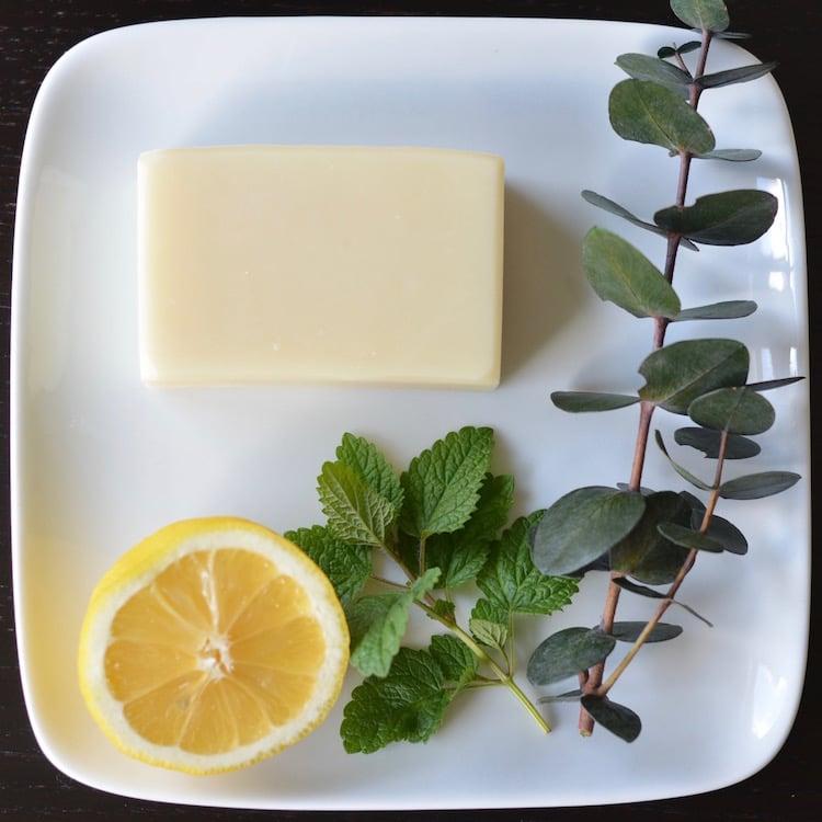 Image of Eucalyptus Lemon