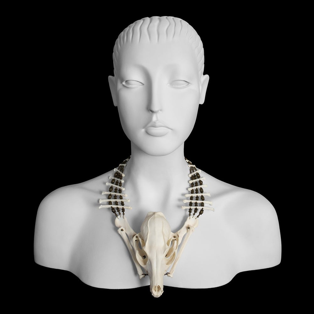 "Image of ""Cemi"" Fox Skull and Bone Necklace"