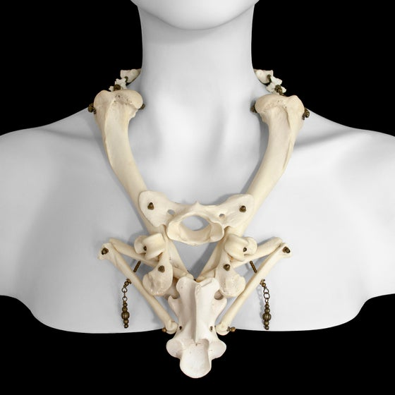 "Image of ""Ishanta"" Coyote Bone Necklace"