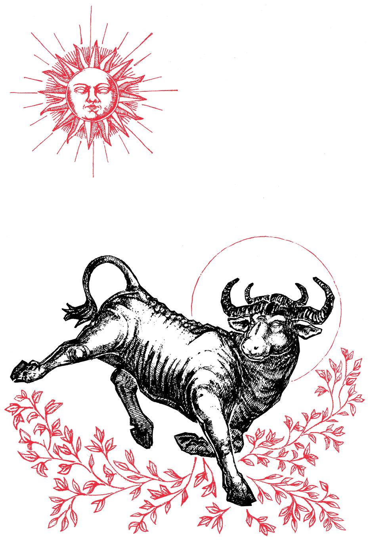 """Image of """"Taurus"""" 8.5""""x11"""" Watercolor Print"""
