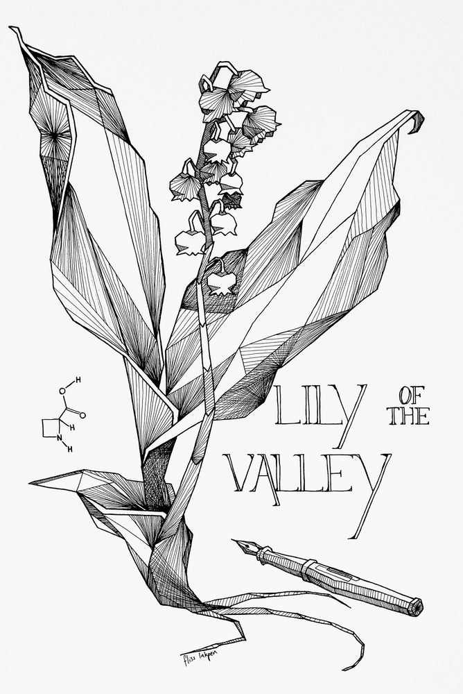 Image of Lily of the Valley Fine Art Print