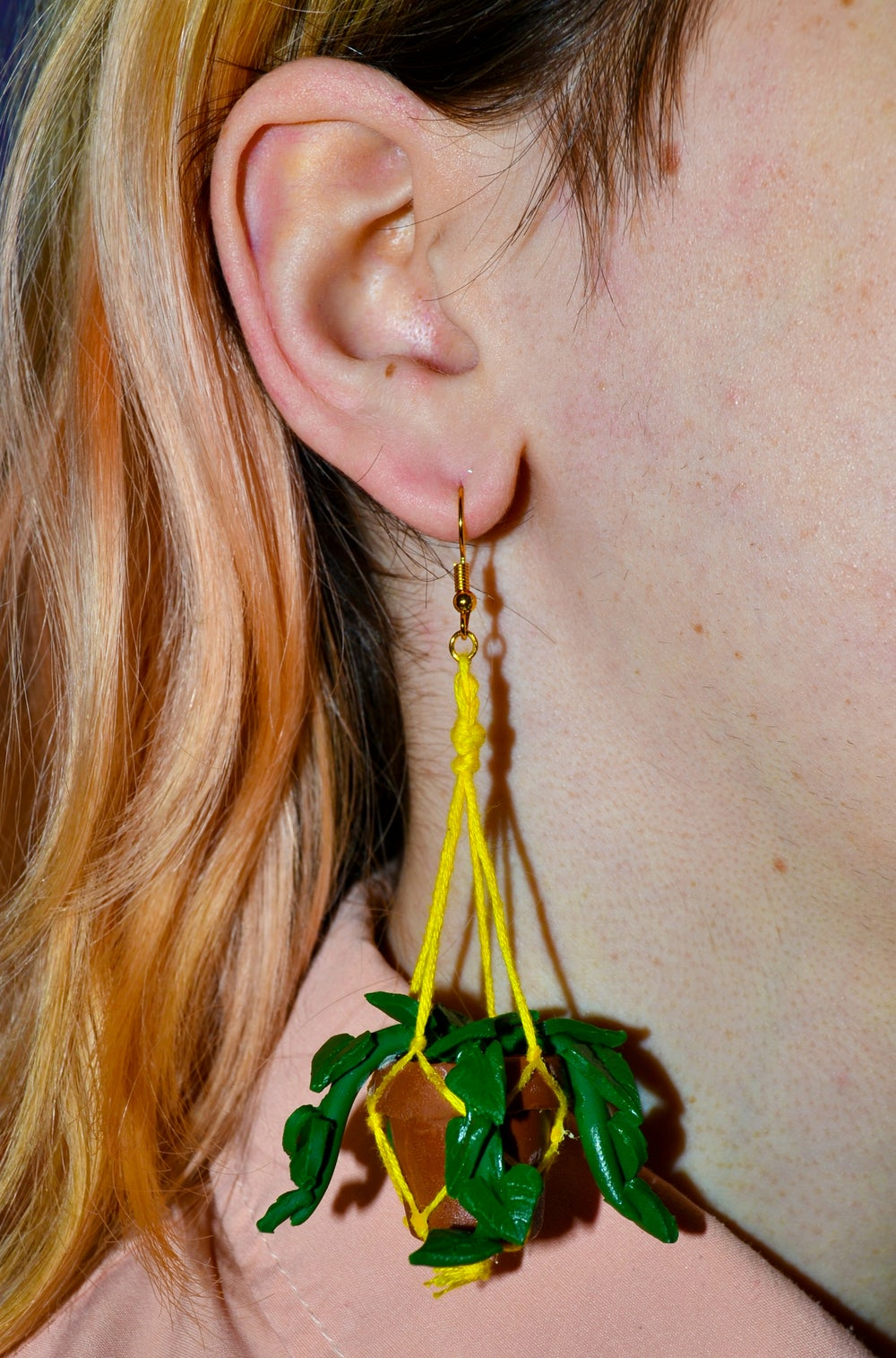 Image of Hanging Planter Earrings