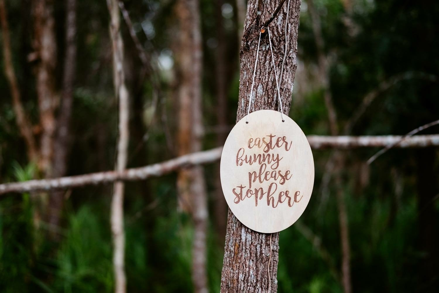 Image of SCRIPT EASTER BUNNY PLAQUE