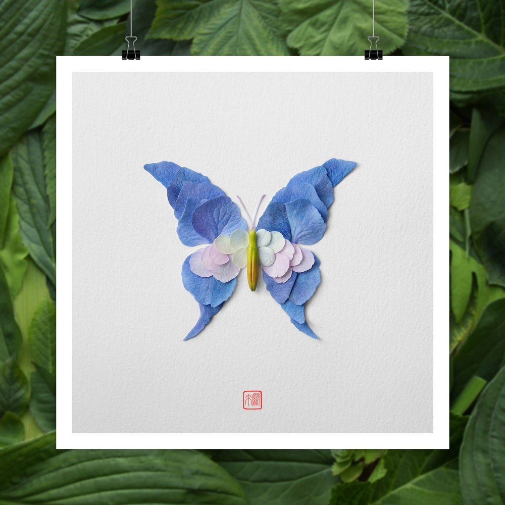 Image of Natura Insects Series 2 -Summer 2017-