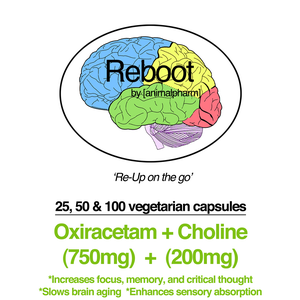 Image of OXIRACETAM(750MG) + CHOLINE(200MG)