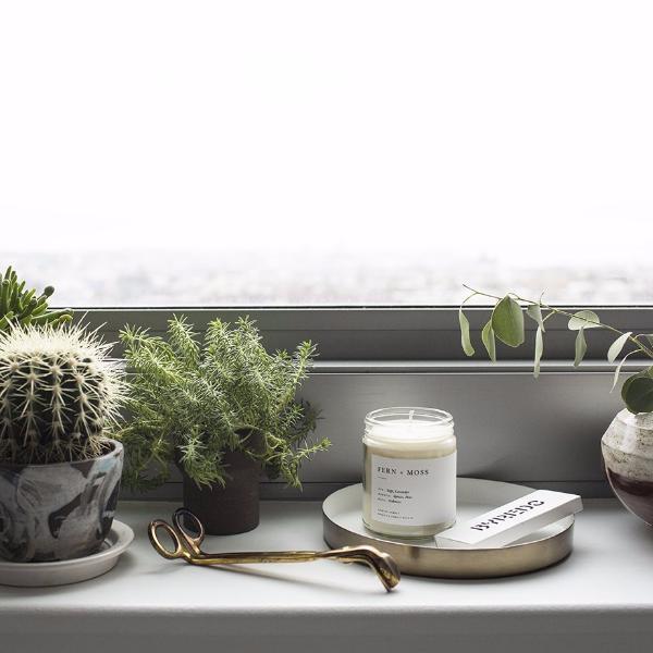 Image of Fern + Moss Minimalist Candle