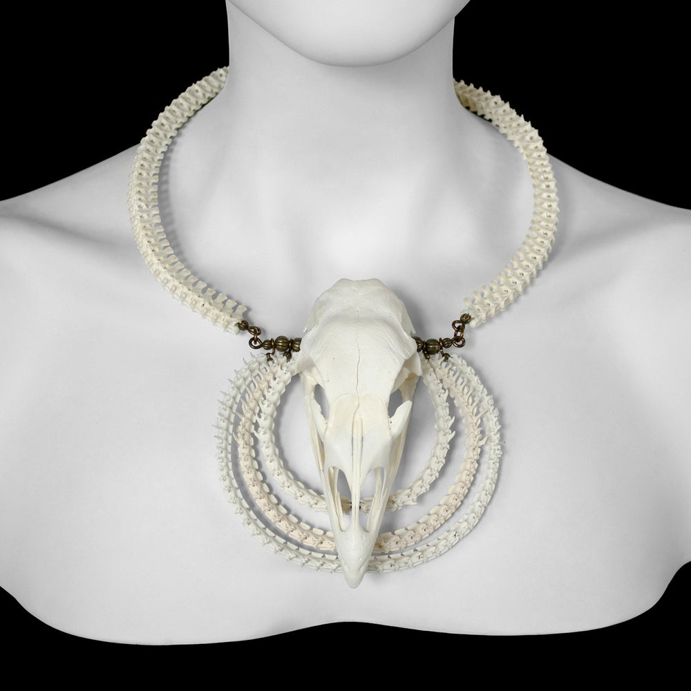 "Image of ""Soni"" Turkey Skull and Snake Bone Necklace"