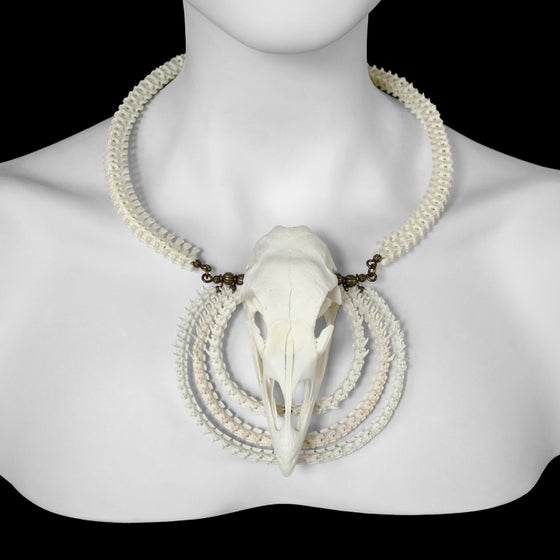 """Image of """"Soni"""" Turkey Skull and Snake Bone Necklace"""