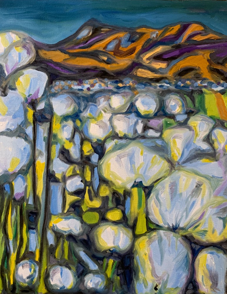 "Image of Fífur | Cotton grass - Oil on canvas 16"" x 20"""