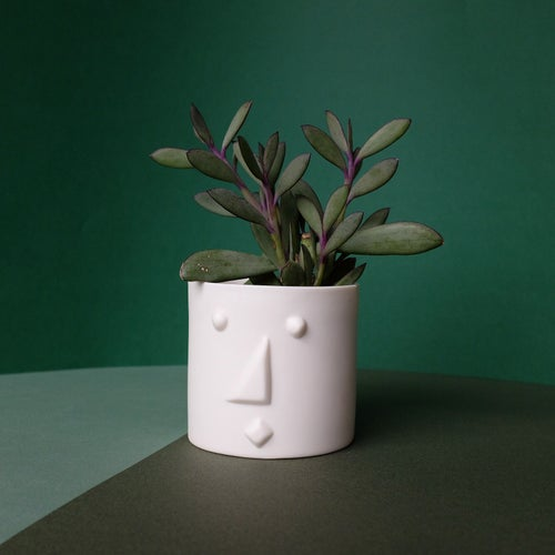 Image of Face planter white